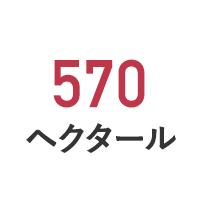 570ヘクタール